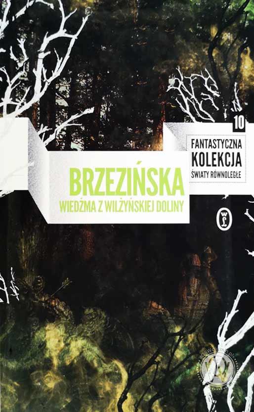 """Anna Brzezińska """"Wiedźma z Wilżyńskiej Doliny"""""""